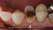 Andrews Tx Emergency Dentist